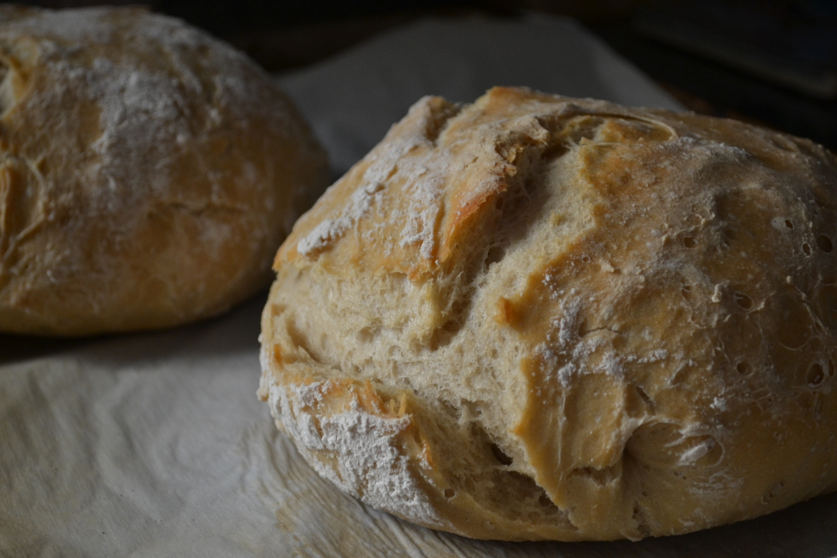 Easy Rustic Bread Loaf